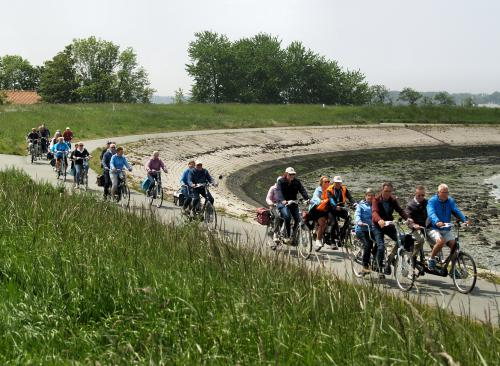 Het Vigeta-peloton fiets langs het water richting Sint-Annaland