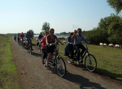 Echt fietsen in de natuur tussen de schapen