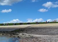 Mooi fietsen over de dijk langs de Oosterschelde